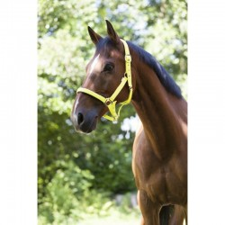 NABILA FLEECE JACKET PIKEUR W19/20