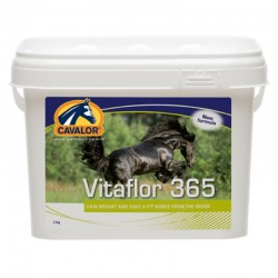 RIDER'S MAGIC LEOVET 200ML