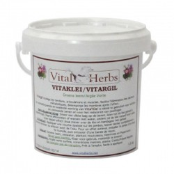VESTE SANFORD JUNIOR KINGSLAND