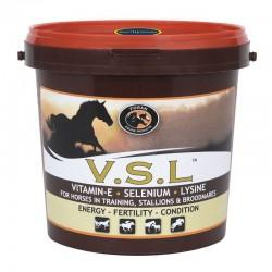 FLAI STOP SPRAY 1 LITRE