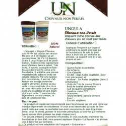 MAN'S SHIRT SLEEVES POLO COMPETITION ASCIA ANIMO